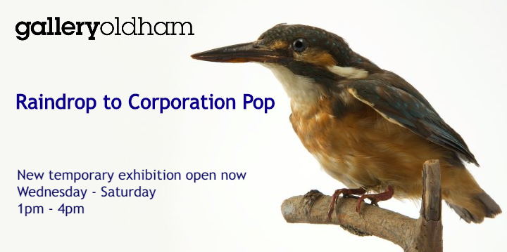 Kingfisher image with the text Raindrop to Corporation Pop to the left hand side